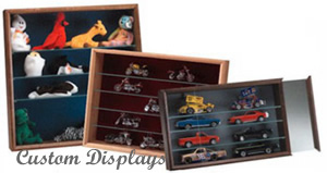 Shelf Unit Display Cases